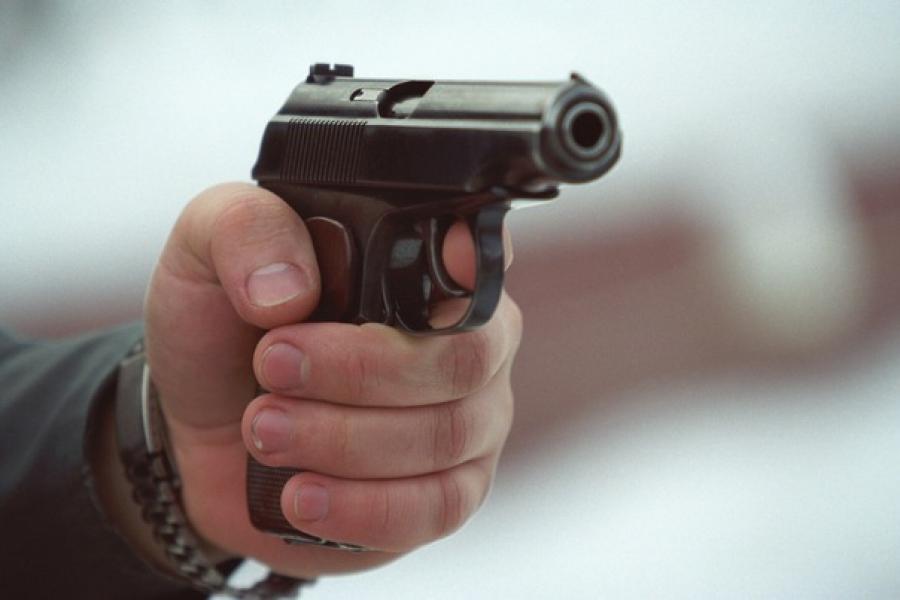 В Подмосковье полицейские были вынуждены застрелить агрессивного пенсионера