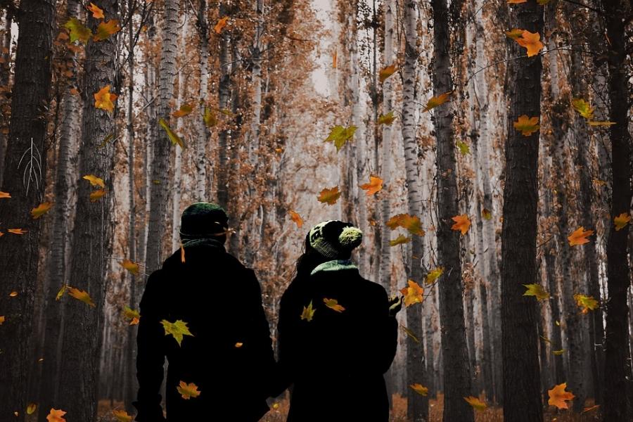 Всероссийский день ходьбы пройдет вЖуковском 30сентября