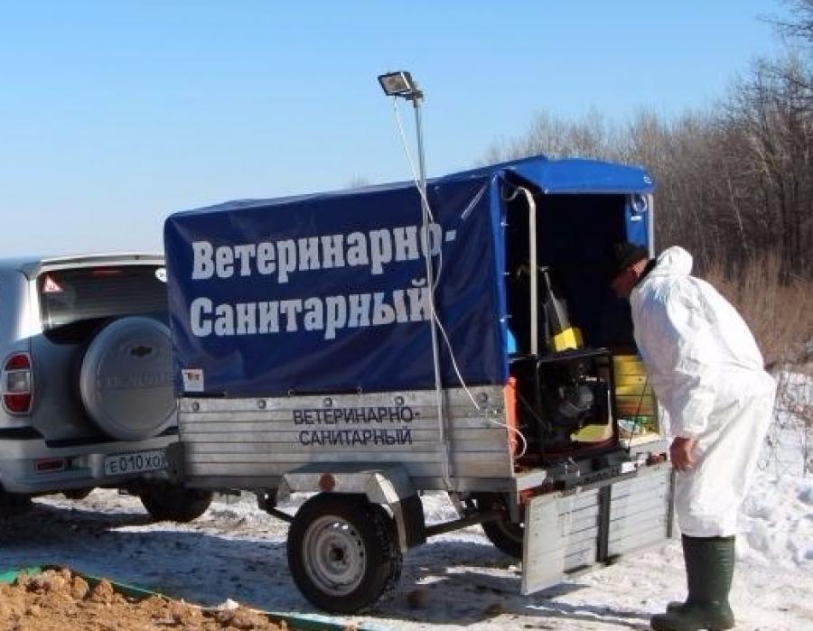 АЧС: очередной случай зарегистрирован вЧерниговской области