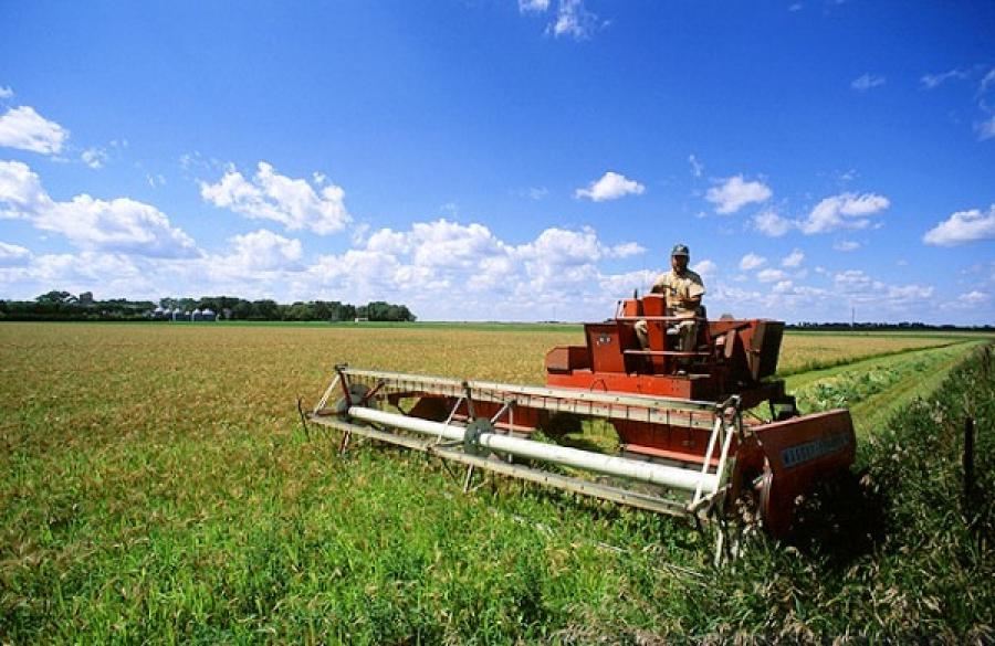 Фермеры Молдавии требуют, чтобы власти отказались от ассоциации с ЕС и возобновили переговоры с Москвой