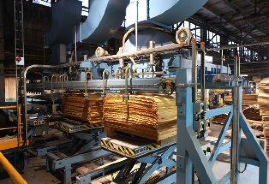 В этом году в Галиче начнут строить фанерный комбинат с 400 рабочими местами